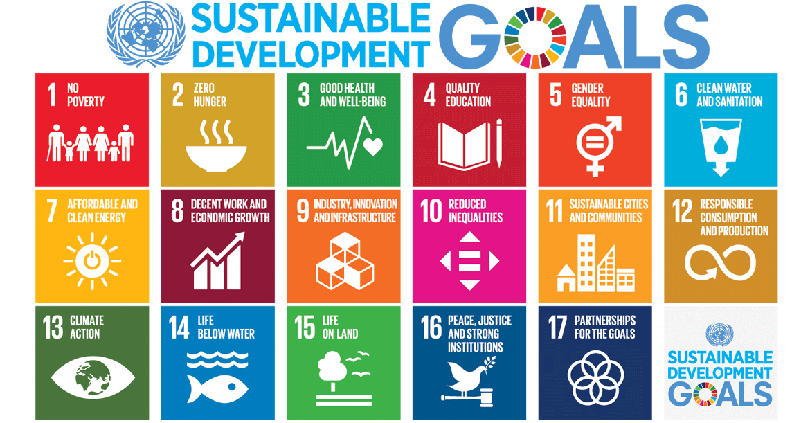 Sustainable Development Goals - The Wedery